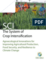 System of Crop Intensification