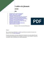 Guía para el cultivo de jitomate.docx