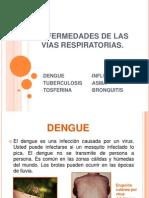 Enfermedades de Las Vias Respiratorias (1)
