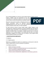 Estructuracion Del Plan de Negocios Formulacion