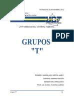 113801139-GRUPOS-T