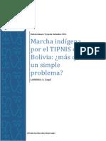 Marcha indígena por el TIPNIS mas que un simple problema