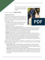 Viticultura.pdf 8