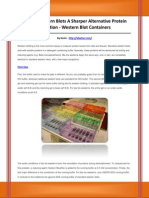Western Blot Containers
