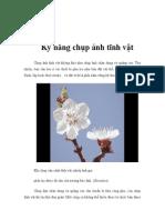 Ky Nang Chup Anh Tinh Vat