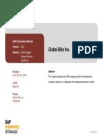 Intro ERP Using GBI GBI Slides en v2.20