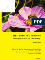 Electromagnetic Pollution + Bee Colony Collapse by Ulrich Warnke