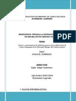 Monografia Violeta d.