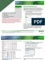 2580 MicrosoftExcel2010 RTM WSG External