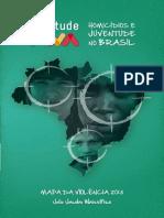 MAPA DA VIOLÊNCIA 2013  Homicídios e Juventude no Brasil
