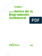 Dinamica Degradacion Ambiental.pdf