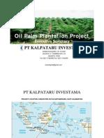 Palm Oil Plantations Project