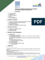 Estructura Para La Presentacion de Proyectos