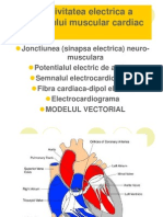 C7_biofiz Tesut Cardiac Vectorcardiograma