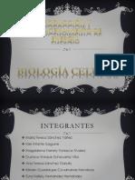 BIOLOGIA CONTEMPORANEA - Protección y almacenamiento de energía