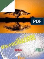 Sinodo Africa 2