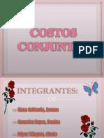 Costos Conjuntos