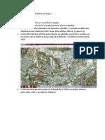 Diagnósticos de Nodos b San Bartolo y Zaragoza