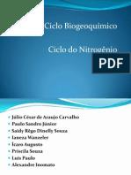 3) Ciclo do Nitrogênio