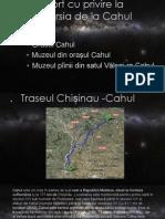 Raport Cu Privire La Excursia de La Cahul