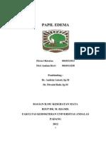 CSS Papil Edema
