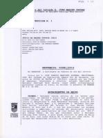 2014-02-19 Sentencia Santiago Azon