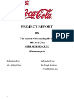 Project Report Jai