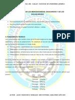 POLISACARIDOS.pdf