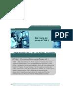 CCNA 1 - Conceitos básicos de redes v3.1