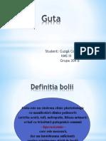 Guta (Kinetoterapie)