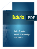 Aula Bacteriologia 130326144133 Phpapp02