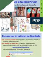 Exame Fisico Ortopedico