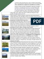 biomesandecosystemschart
