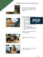 Paddy Straw Mushroom | Mushroom | Compost