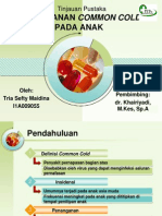 PPT Common Cold