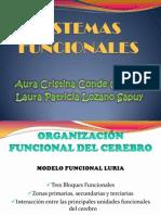 SISTEMAS FUNCIONALES.pptx