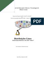 Experimento Distribuições Linux