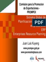 ERP.pdf