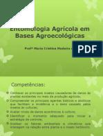 Entomologia Agrícola em Bases Agroecológicas_Ementa