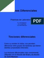 Tinciones Diferenciales Aspectos Tecnicos 1192717620718197 5