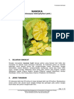 nangka 3.pdf
