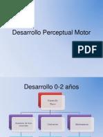 Desarrollo Perceptual Motor Para Toda Compu