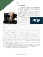 28 - Os Boiadeiros.pdf