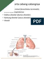 164847560-Spirometri