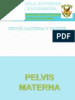 Pelvis y Parto2