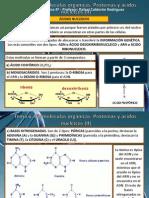 Tema 6 Proteinas y Ac Nucleicos 2