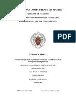 FENOMENOLOGIA EN EL BOSCO. DE DE LA EXPERIENCIA VISIONARfl LA ICONOGRAFÍA A LA FIGURACION