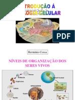 Aula 1 - Biologia Celular