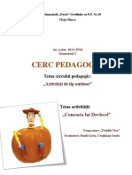 Gr. Mare - Proiect Cerc