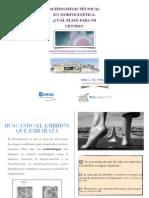 José Luis de Pablo - Alternativas técnicas en morfocinética - II Simposio Reproducción Asistida Quirón